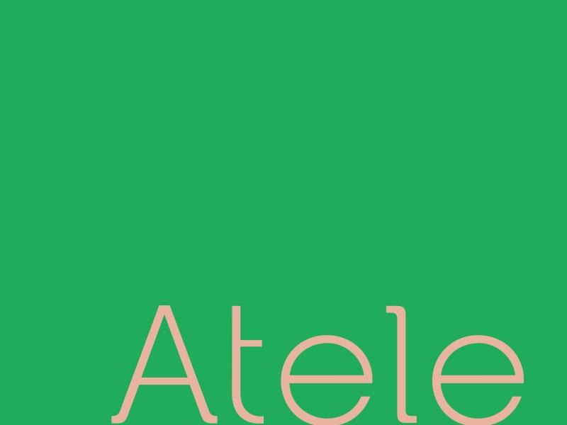 TT000213_atele_apres_identidade_03