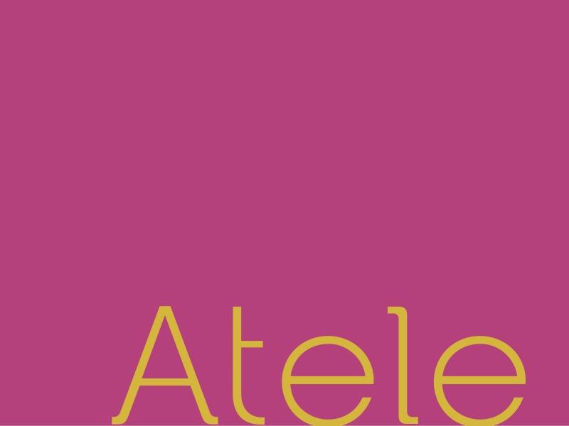 TT000213_atele_apres_identidade_04