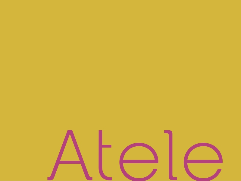TT000213_atele_apres_identidade_05